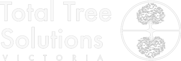 Tree Removal Experts Victoria